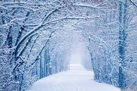 invernal08